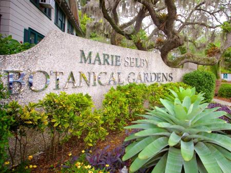 Marie Selby Botanical Gardens