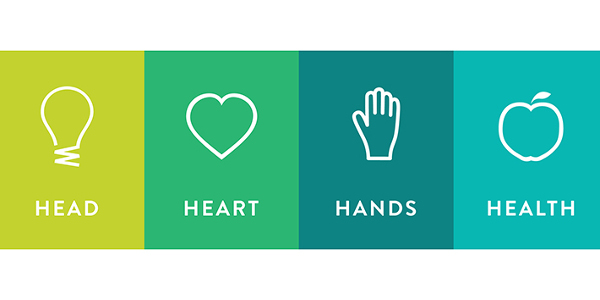 Head Heart Hands Health