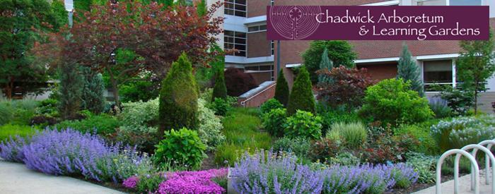 Chadwick Arboretum