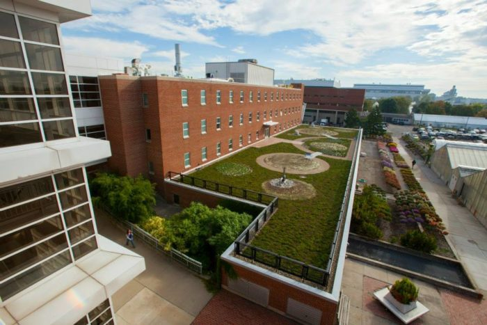 Howlett Hall Green Roof