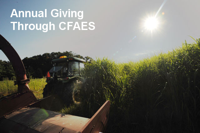 Annual Giving through CFAES