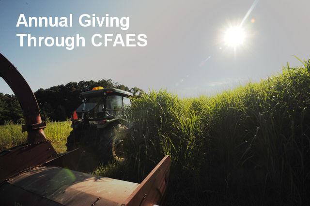 Annual Giving through CFAES