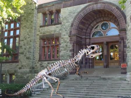 Dinosaur Day at Orton