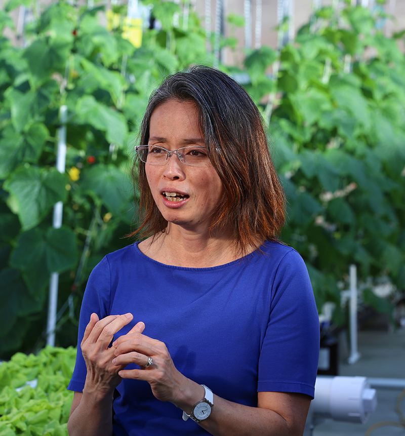 Dr. Chieri Kubota making a point in a greenhouse
