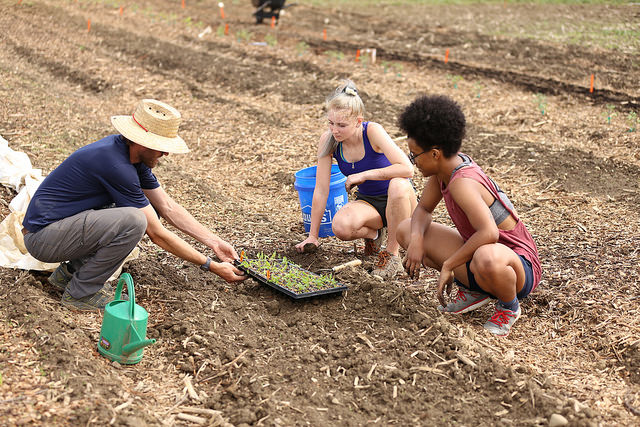 Students getting hands-on instruction on a farm.