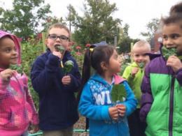 Children at the Highland Youth Garden