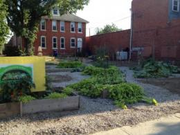 Friends of the Homeless Garden