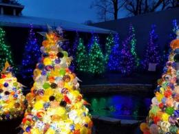 Franklin Park Conservatory lights