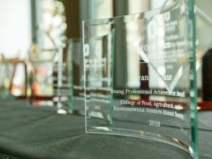 Alumni awards trophies from past years