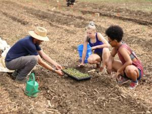 OSU Student Farm benefits from donations to CFAES