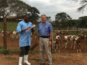 Dr. Dwight Roseler, right, in front of cattle
